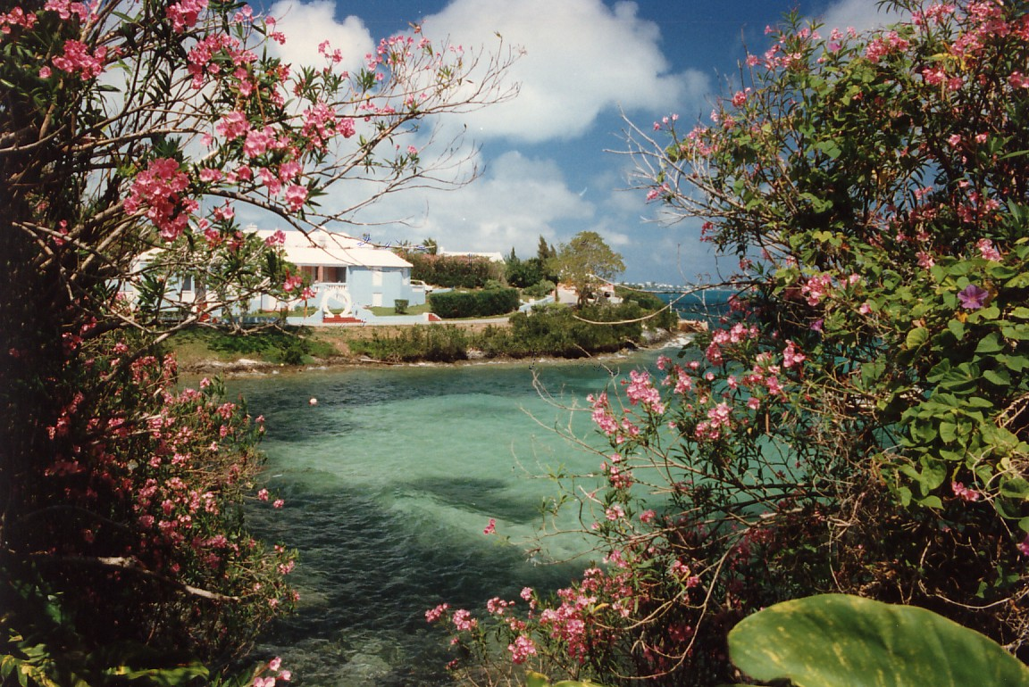 If you seek views like this, dropping by between March and December will be the best time to visit Bermuda for you.